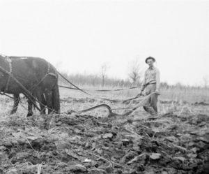 plowingwayneshields-medium-2